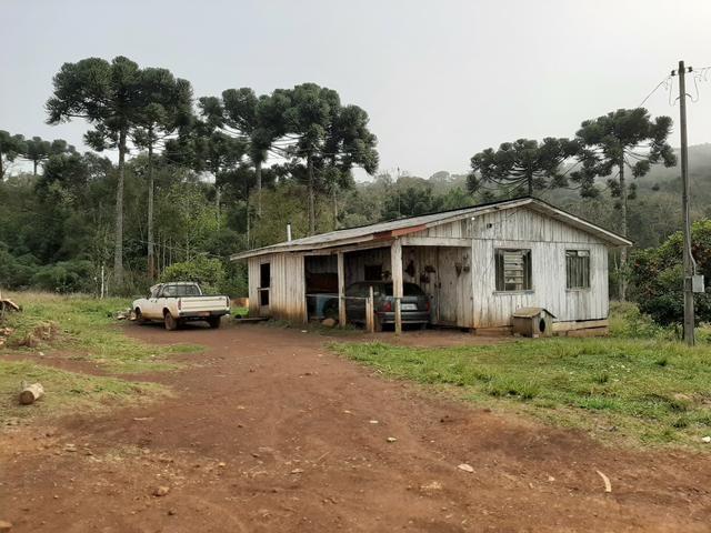 Fazenda de 94 alqueires .Alagado Rio da Areia - Faxinal do Céu . Pinhão PR - Foto 13