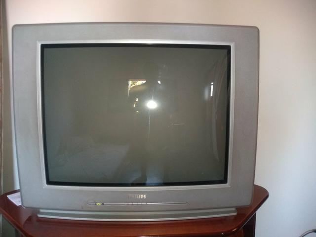 Vendo TV 29 polegadas + controle