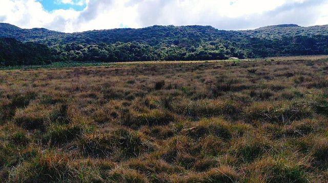 Lindo terreno em Urubici . ( Serra) - Foto 4