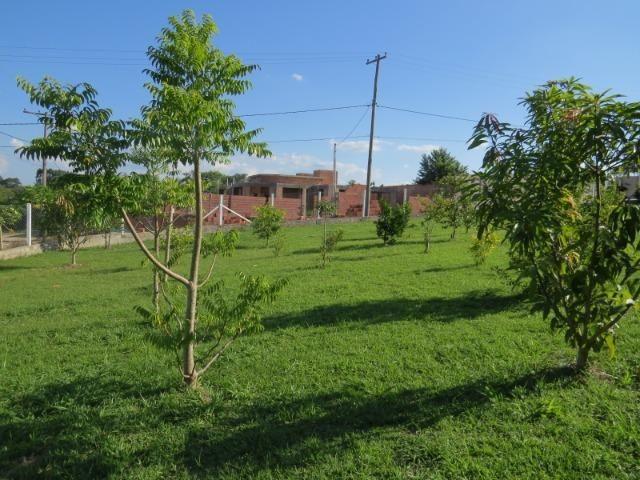 Chácara em Porangaba, 1500 m², casa de laje, pomar, água sabesp, Imobiliária Paletó - Foto 16