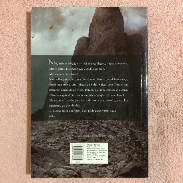 Livro - Êxtase - Foto 2
