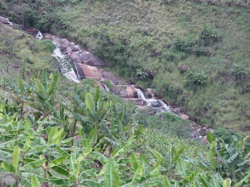 Fazenda com 80 hectares em Amaraji/Pe - REF. 286 - Foto 13
