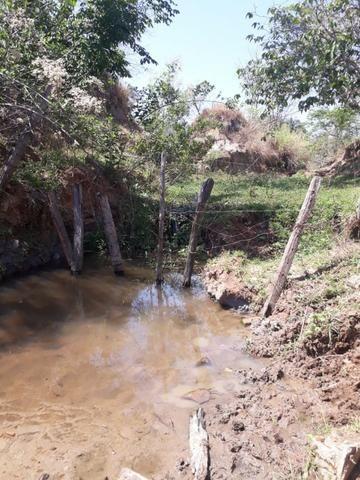 Terreno São Luis Montes Belos - Foto 9