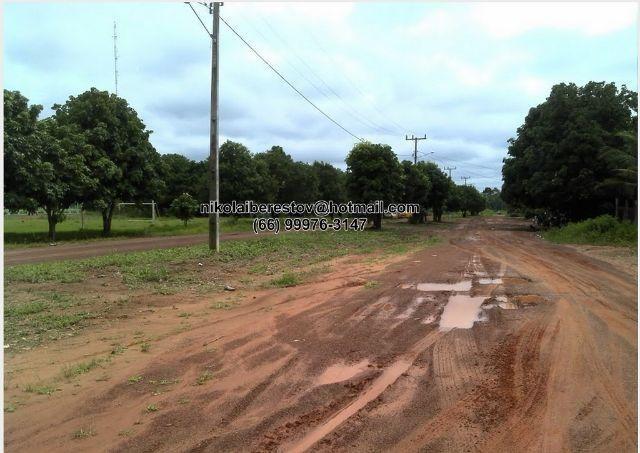 Fazenda 41 hectares santa cruz do xingu mt nikolaiimoveis