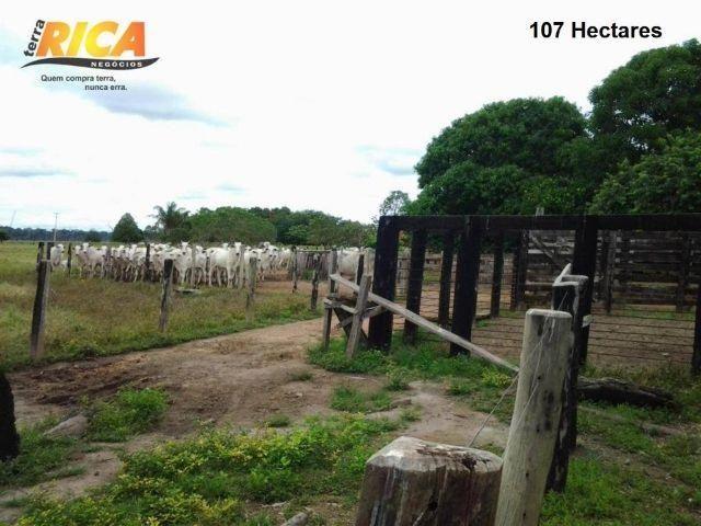 Fazenda com 107 hectares- FA0013