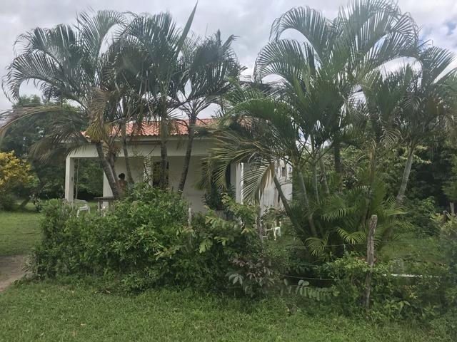 Granja, sítio, área, fazenda em Igarassu, Porto do vasco na estrada de mangue seco! - Foto 12