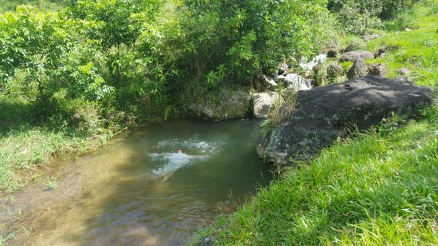 Sítio de 14 alqueires ou 68.320 hectares em Silva Jardim RJ - Foto 2