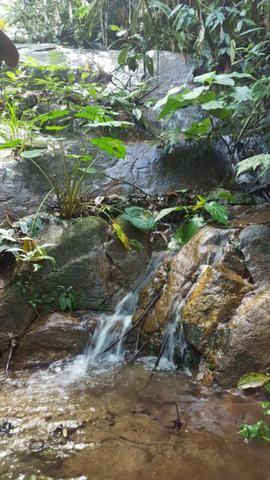 Sítio de 14 alqueires ou 68.320 hectares em Silva Jardim RJ - Foto 7