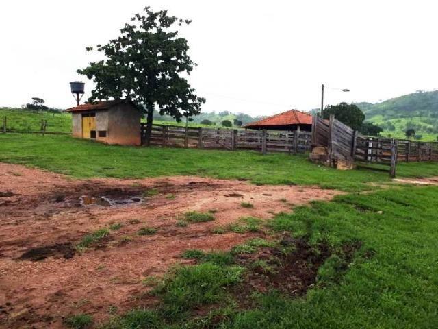 148 Alq. Cultura D Bacuri 50% Entrada + 2 Anuais Água Própria Da Faz. Água Limpa GO - Foto 12