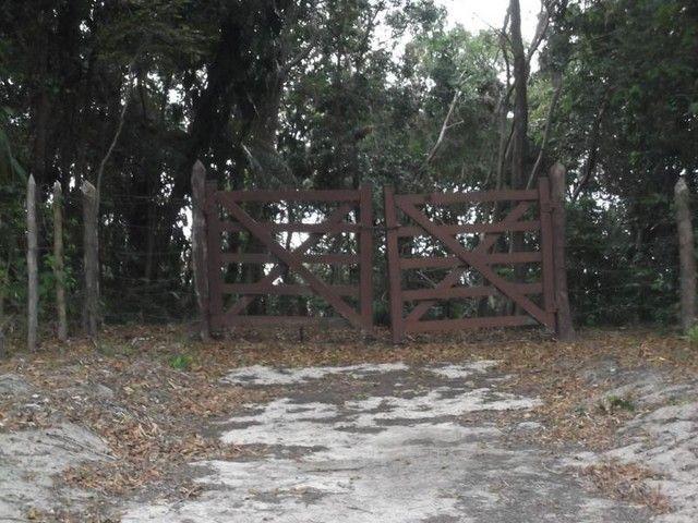 Terreno para Venda em Mata de São João, Acú da Torre - Foto 11