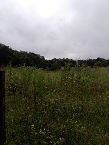 Chácara 25 hectares em Porto Lucena RS. - Foto 13