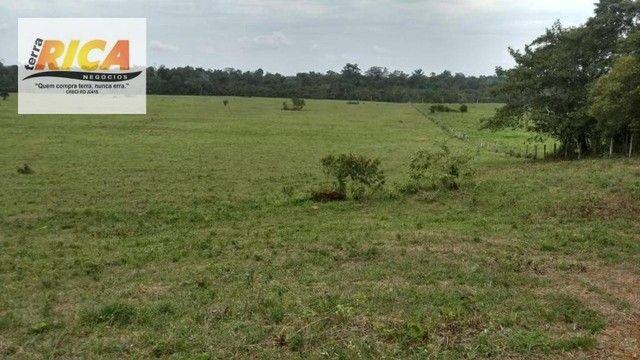 Fazenda com 320 hectares a venda na Zona Rural de Porto Velho/RO - Foto 5