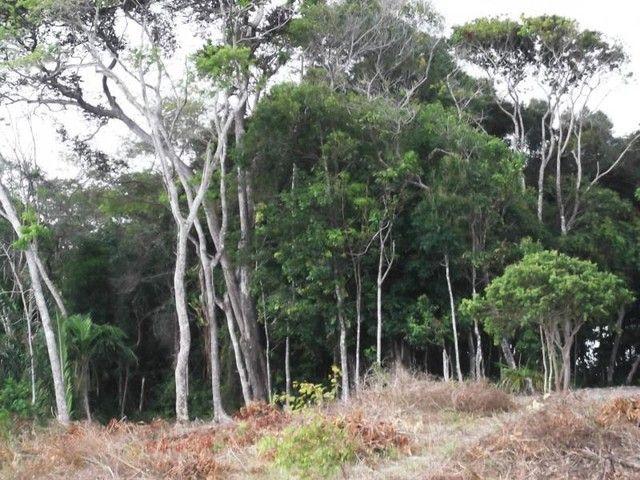 Terreno para Venda em Mata de São João, Acú da Torre - Foto 6