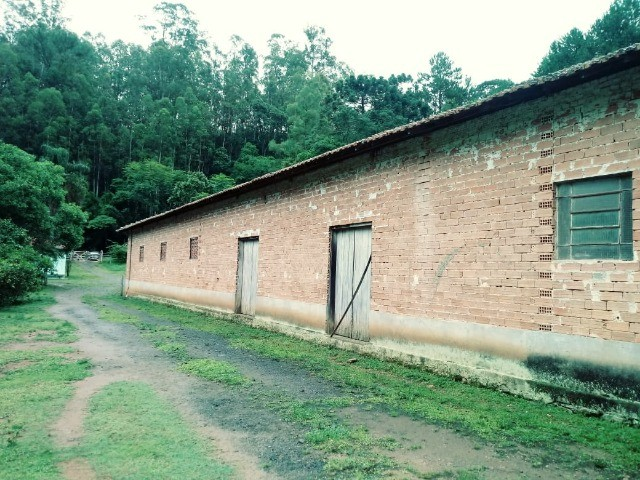 Chácara contendo casa e galpão em Delfim Moreira- Sul de Minas Gerais. - Foto 9