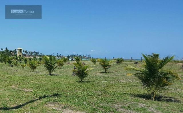 Terreno em condomínio fechado à beira mar no sonho verde - Foto 17