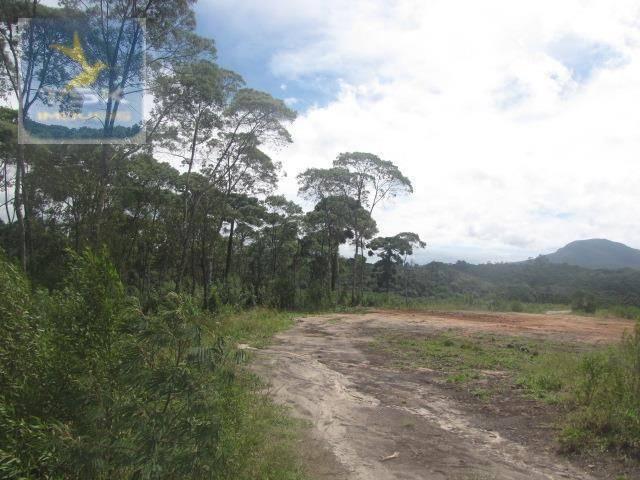 Piraquara chácara 64.471,25 m² planta deodoro infinitas possibilidades dentro da cidade ch - Foto 8