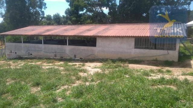 Fa0009 fazenda à venda, 605000 m² por r$ 3.150.000 - zona rural - quitandinha/pr - Foto 3