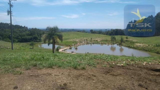 Fa0009 fazenda à venda, 605000 m² por r$ 3.150.000 - zona rural - quitandinha/pr - Foto 14
