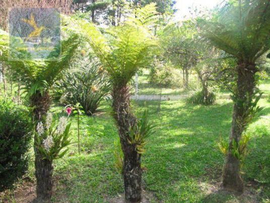 CH0223 - Chácara com 2 dormitórios à venda, 10935 m² por R$ 337.000 - Zona Rural - Agudos  - Foto 19