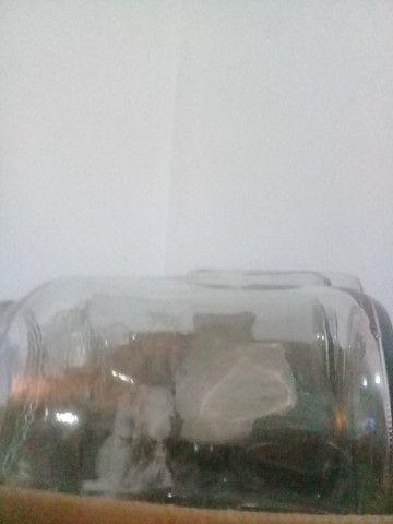 Vendo vidros usados de palmito - Foto 2