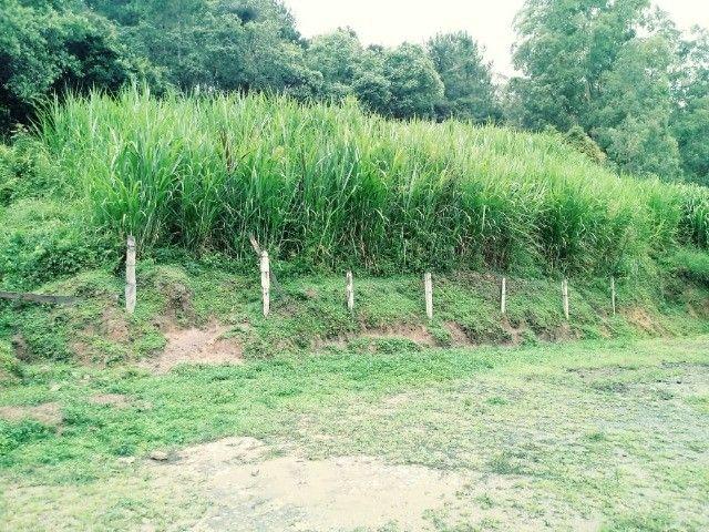 Chácara contendo casa e galpão em Delfim Moreira- Sul de Minas Gerais. - Foto 6