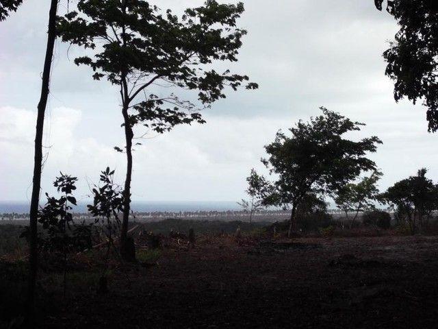 Terreno para Venda em Mata de São João, Acú da Torre - Foto 16