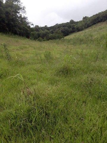 Chácara 25 hectares em Porto Lucena RS. - Foto 20