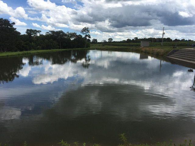 Chácara 40 km de Goiânia - Foto 4