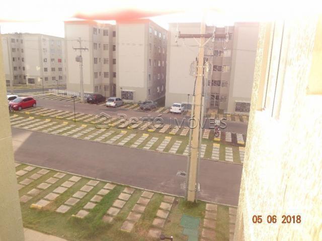 Apartamento para alugar com 2 dormitórios em Cavalhada, Porto alegre cod:BT7615 - Foto 12