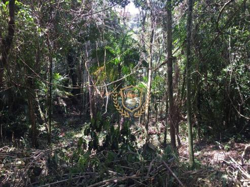 Terreno à venda, 653 m² por r$ 210.000,00 - comary - teresópolis/rj - Foto 6