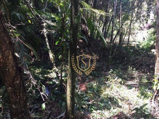 Terreno à venda, 653 m² por r$ 210.000,00 - comary - teresópolis/rj - Foto 2