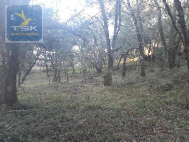 CH0300 - Chácara Agudos do Sul 12.100 m² 3 km da cidade - Foto 9