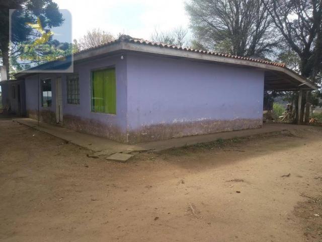 Ch0303 chácara/área industrial mandirituba 15.000 m² aceita chácara menor na troca perto d - Foto 12
