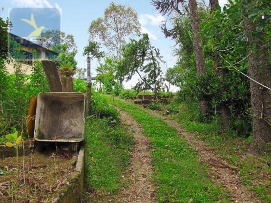 Chácara rural à venda, 4 pinheiros, mandirituba. - Foto 12