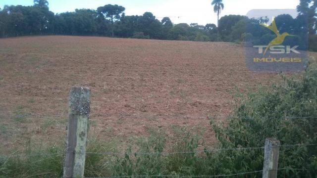 CH0329 - Quitandinha 5 Alq. Chácara 2 Km do asfalto 3,5 km da Cidade - Foto 10
