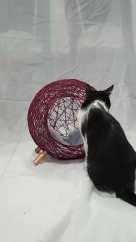 Toca retrô para gatos - Foto 2