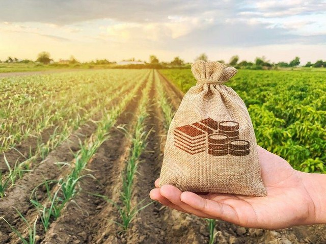 Crédito RURAL para início de negocio-agro  - Foto 4