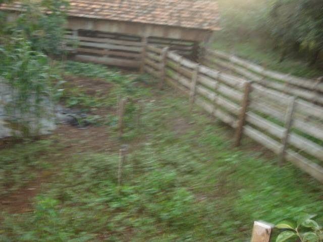 Chácara 25 hectares em Porto Lucena RS. - Foto 3