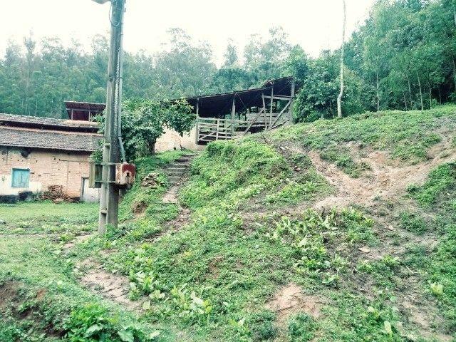 Chácara contendo casa e galpão em Delfim Moreira- Sul de Minas Gerais. - Foto 12