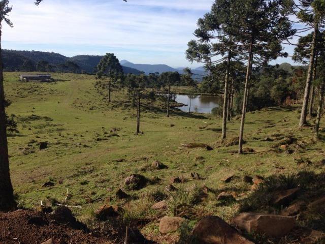 Fazenda em Urubici - SC - Foto 20