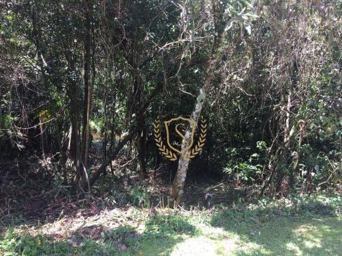Terreno à venda, 653 m² por r$ 210.000,00 - comary - teresópolis/rj - Foto 3