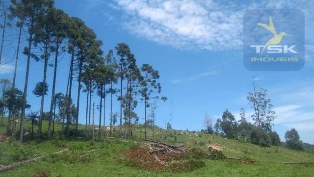 Fa0009 fazenda à venda, 605000 m² por r$ 3.150.000 - zona rural - quitandinha/pr - Foto 12