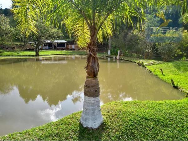 Ch0291 mandirituba (porteira fechada) chácara 14.500,00 m² - Foto 5