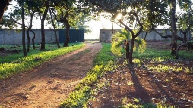 Chácara rural à venda, sítios de recreio mansões do campus, goiânia. - Foto 8
