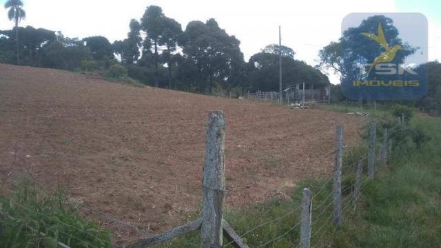 CH0329 - Quitandinha 5 Alq. Chácara 2 Km do asfalto 3,5 km da Cidade - Foto 9