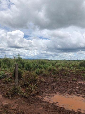 Terra roxa: arrendo para lavoura - Foto 2