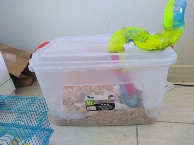 Gaiolas para hamster  - Foto 6