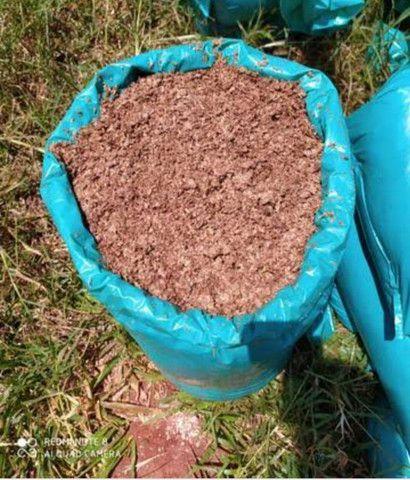 Cevada úmida ensacada  - Foto 2