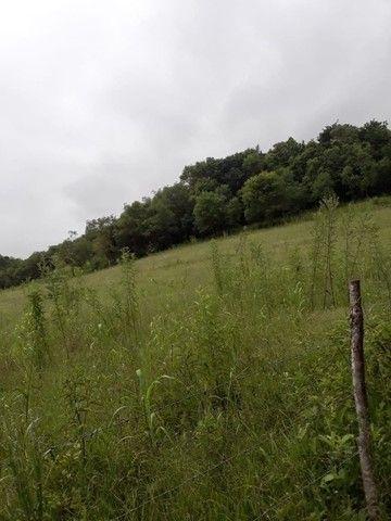 Chácara 25 hectares em Porto Lucena RS. - Foto 14
