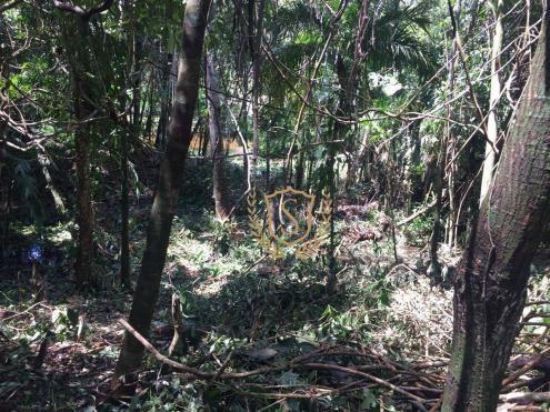 Terreno à venda, 653 m² por r$ 210.000,00 - comary - teresópolis/rj - Foto 10